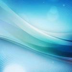 【馬券師メモ】2月25日(日曜)[平場] 小倉・阪神・中山 中央競馬予想  チューリップ賞1週前