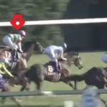 有馬記念2015予想考察1 リアファルは底知れない馬