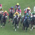 阪神ジュベナイルフィリーズ2015予想考察 出走馬の見解その3 デンコウアンジュの末脚は通用するか?