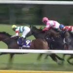 ◎阪急杯2016予想考察 出走予定馬の見解(ミッキーアイル、レッツゴードンキ等)