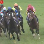 ◎中山記念2016予想考察 出走予定馬の見解(ドゥラメンテ、リアルスティール等)